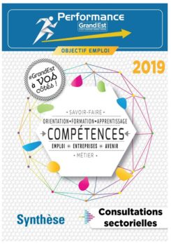 Synthèse Consultations sectorielles 2019